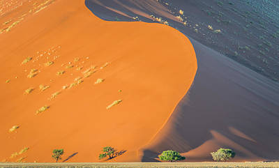 Bush Photograph - Sossusvlei Dawn - Namibia Sand Dune Photograph by Duane Miller