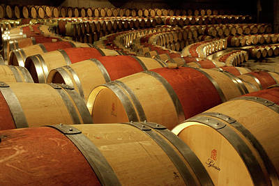 Winery Photograph - South America, Chile, Colchagua by Jaynes Gallery