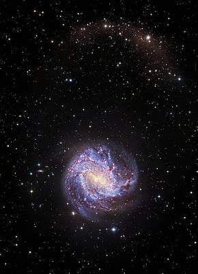 Messy Photograph - Southern Pinwheel Galaxy by Robert Gendler