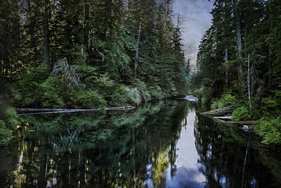 Spawning A River Print by Belinda Greb