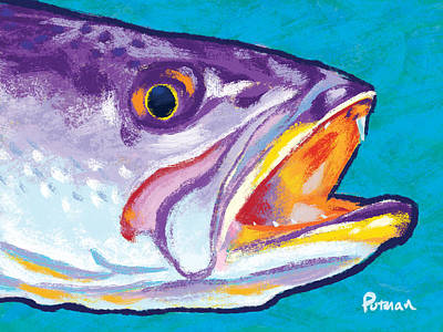 Trout Digital Art - Speckled Trout Colors by Kevin Putman
