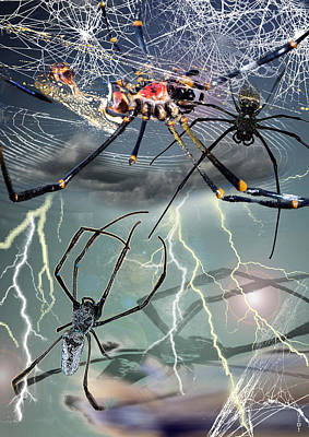 Spider Legs Mixed Media - Spiders On The Storm by Dray Van Beeck