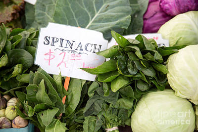 Spinach Photograph - Spinach by Rebecca Cozart