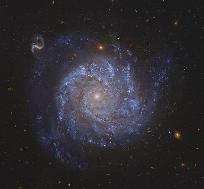 Universe Photograph - Spiral Galaxy by Celestial Images