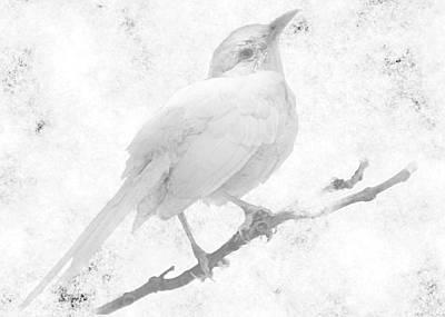 Mockingbird Digital Art - Spirit Bird by Shannon Story