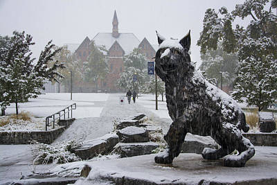 Spirit In The Snow Print by Nick Garner