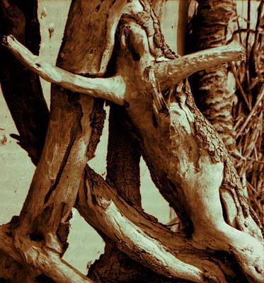 Spirit Of The Cypress Print by Gustave Kurz
