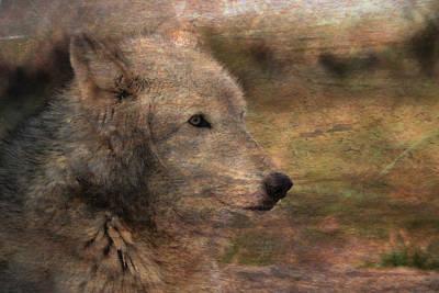 Spirit Of The Wolf Print by Deena Stoddard