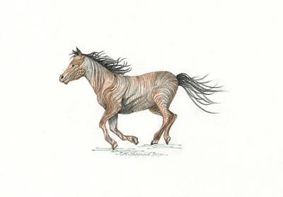 Pointy Ears Drawing - Spirit Run by Michael Shegrud
