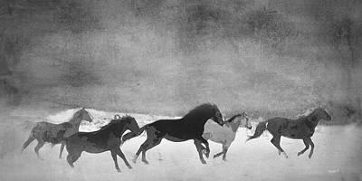 Black And White Horses Digital Art - Spirited Horse Herd by Renee Forth-Fukumoto