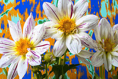 Splash Of Color Print by Garry Gay