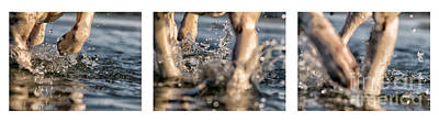 Water Play Photograph - Splash by Stelios Kleanthous