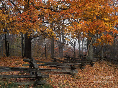 Indiana Landscapes Photograph - Split Rail Autumn - Fm000085 by Daniel Dempster