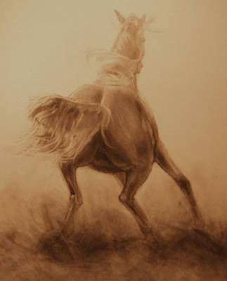 Wild Horse Drawing - Spooked by Jani Freimann