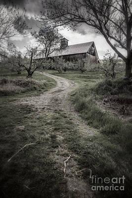 Spooky Apple Orchard Print by Edward Fielding