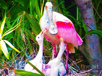 Spoonbill Mixed Media - Spoonbill Babies by Michelle Stradford