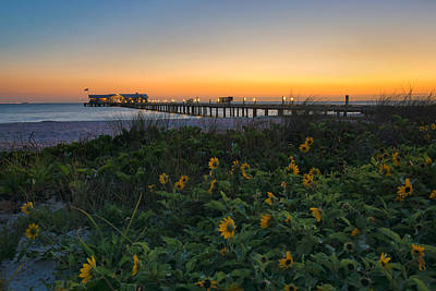 Spring At City Pier Print by Darylann Leonard Photography