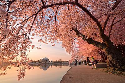 Spring Awakening Print by Bernard Chen