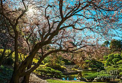 Spring Blossom Star Print by Jamie Pham
