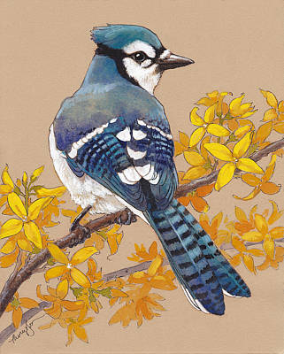 Blue Jay Painting - Spring Blue Jay 3 by Tracie Thompson
