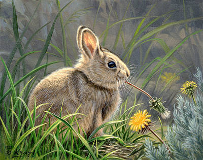 Dandelion Painting - Spring Cottontail by Paul Krapf
