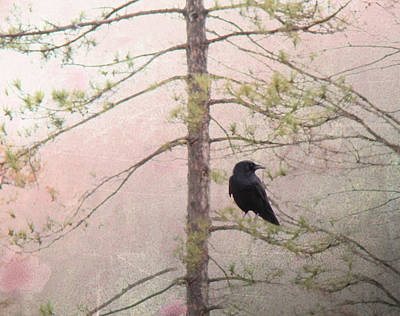 Spring Crow  Print by Gothicolors Donna Snyder