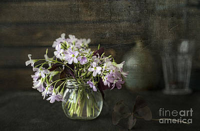 Water Jars Photograph - Spring by Elena Nosyreva