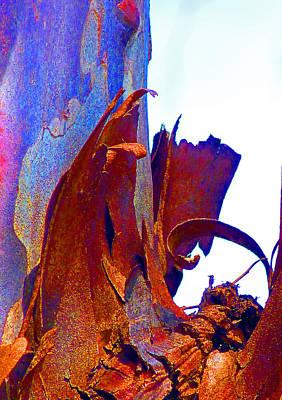 Fantasy Bark Photograph - Spring Eucalypt Abstract 8 by Margaret Saheed