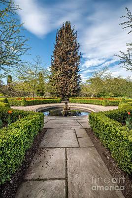 Bush Digital Art - Spring Fountain by Adrian Evans