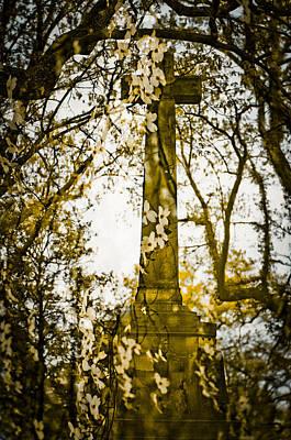 Cincinnati Photograph - Spring Grove 21 by Scott Meyer