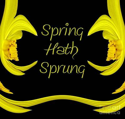 Quote Photograph - Spring Hath Sprung Daffodils by Rose Santuci-Sofranko
