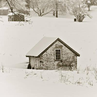 Snowed Trees Mixed Media - Spring In Boyertown by Trish Tritz
