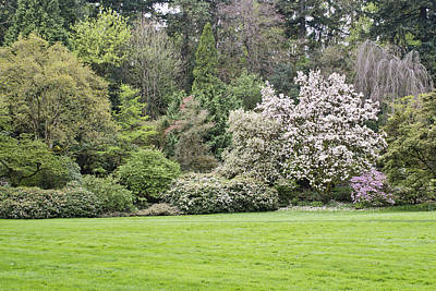 Scenic Photograph - Spring In The Garden by Priya Ghose