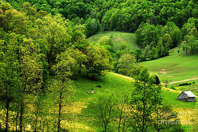 Log Cabin Photograph - Spring In West Virginia by Thomas R Fletcher