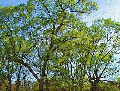 Spring Leaves In The Willows Print by Joy Nichols