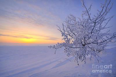 Alberta Prairie Landscape Photograph - Spring Morning by Dan Jurak