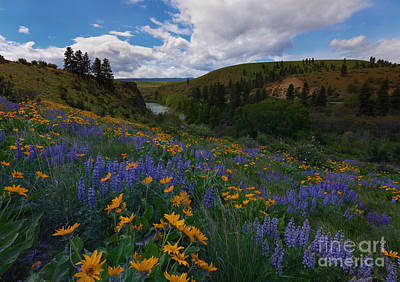 Spring On The Yakima Print by Mike  Dawson