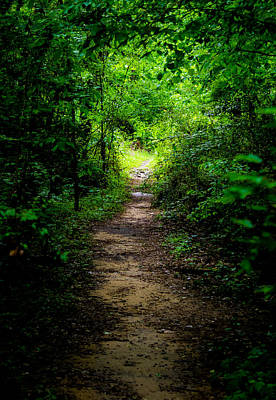 Spring Landscape Digital Art - Spring Path To The Light by Shelby  Young