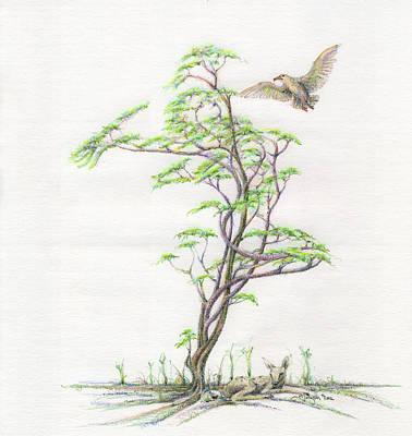 Spring Rising Print by Mark Johnson