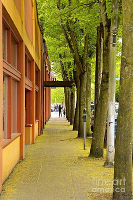 Yellow Photograph - Spring Street Scene by Sean Griffin