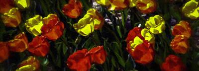 Spring Sunshine Print by F Leblanc