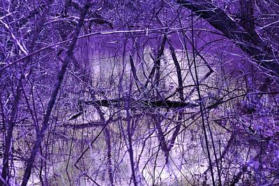 Colorful Photograph - Spring Swamp by Michael Sokalski