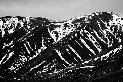 Spring Tundra Print by David Broome