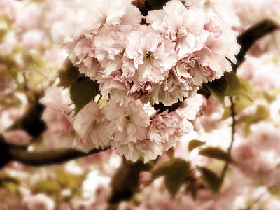 Soft Digital Art - Spring Whisper by Jessica Jenney