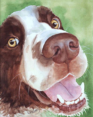 Springer Spaniel Painting - Springer by Greg and Linda Halom