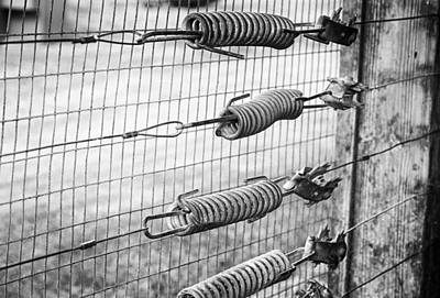 Hanging Mechanism Photograph - Springs On The Fence by Christi Kraft