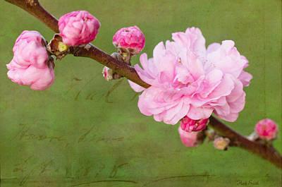 Spring's Reveal  Print by Heidi Smith
