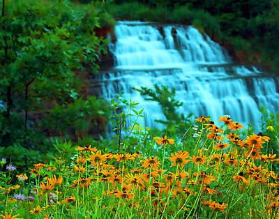 Photograph - Springtime by Dan  Dickerson