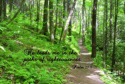 Scripture Photograph - Springtime In The Forest by Jill Lang