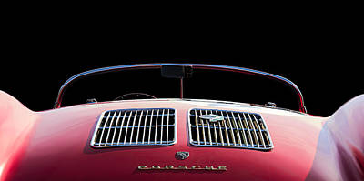 Spyder Red Print by Douglas Pittman